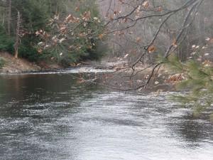 MacKenzies Pool, Millers River Looking Tail Of Pool